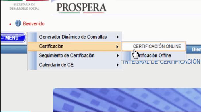 Certificación online