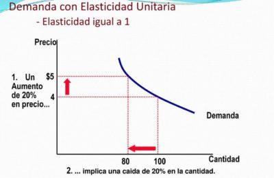 Elasticidad Unitaria