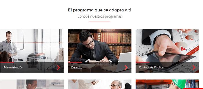 Programas UVM en línea