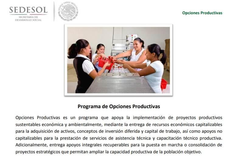Programas de opciones productivas