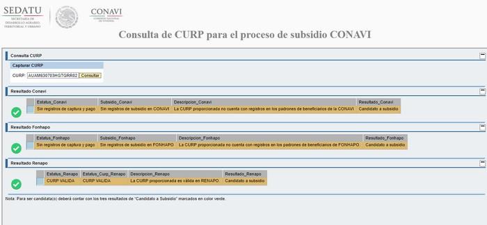 resultado consulta CURP